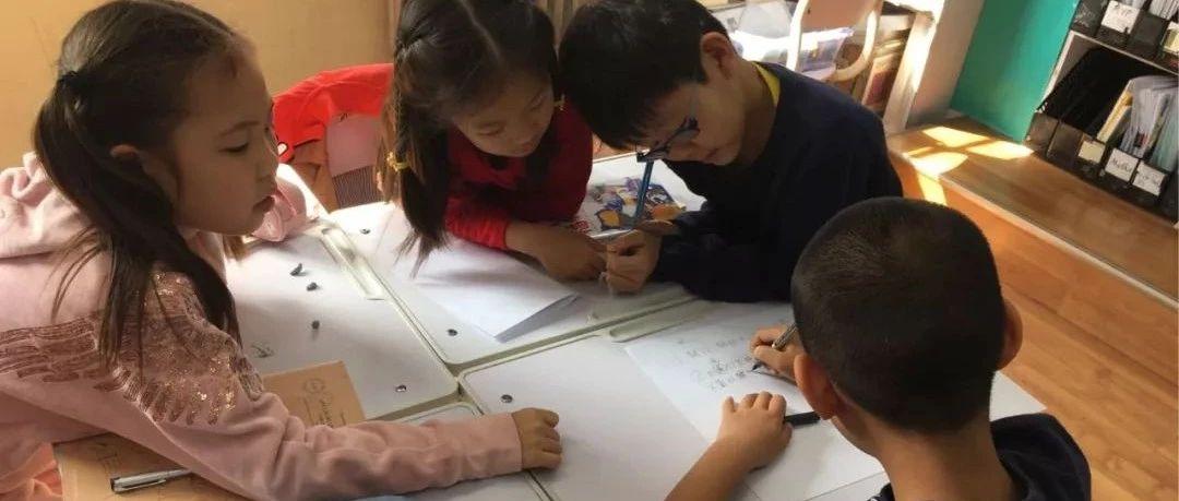在中国,我居然看到了这样的教育