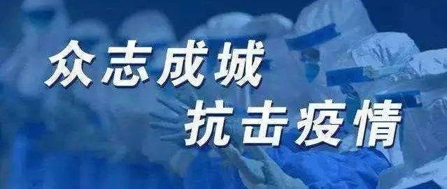 满江红•抗疫曲